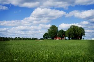 Działka rolna - czy taka inwestycja się opłaca?